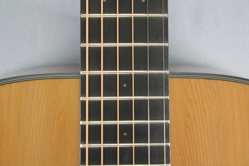 Stanford Durango G 40 CM Westerngitarre 23