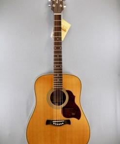 Richwood D65 VA Westerngitarre 3