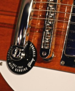 Gibson Firebird V 2002 3