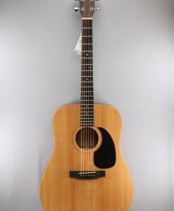 Sigma Guitars DM+ 2