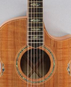 Cole Clark CCAN3EC-BLBL Westerngitarre
