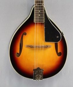 Appalachian APM-1 Mandolin Pickin' Pack