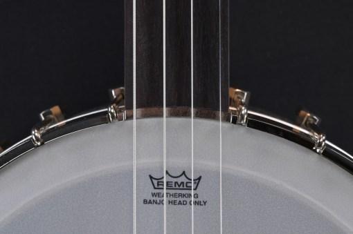 Fretless Banjo