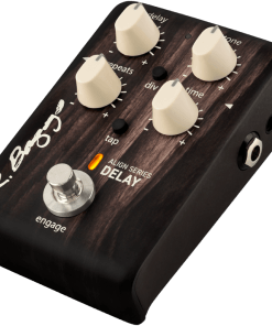 LR Baggs Align Series Delay Pedal