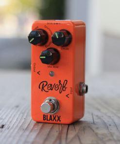 Blaxx Stagg Reverb