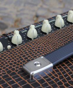 Fender Blues Junior IV Aligator LTD