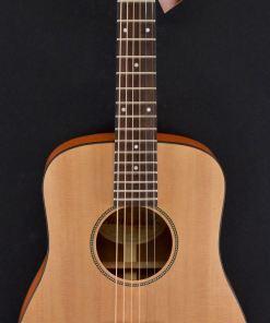 Richwood T-20 Traveller Guitar