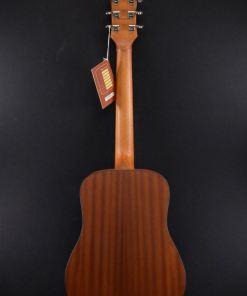 Richwood T-20 Traveller Guitar1