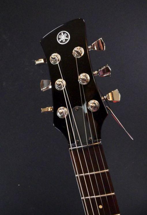 Tonabnehmer: 2 Alnico Humbucker 1 Master Volumen- und 1 Tonregler mit Push/Pull Dry-Switch 3-Wege Toggle Switch
