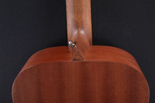 Martin Guitars DJRE