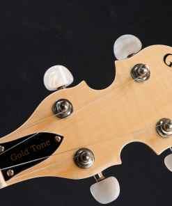 Gold Tone CC-100R