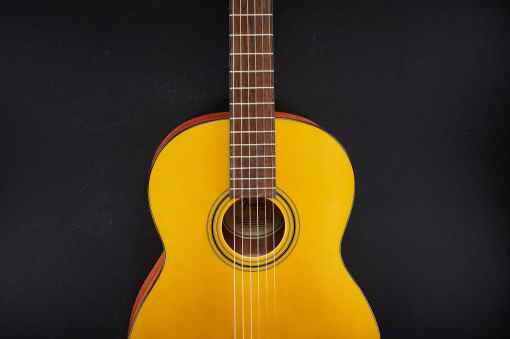 Fender ESC 110