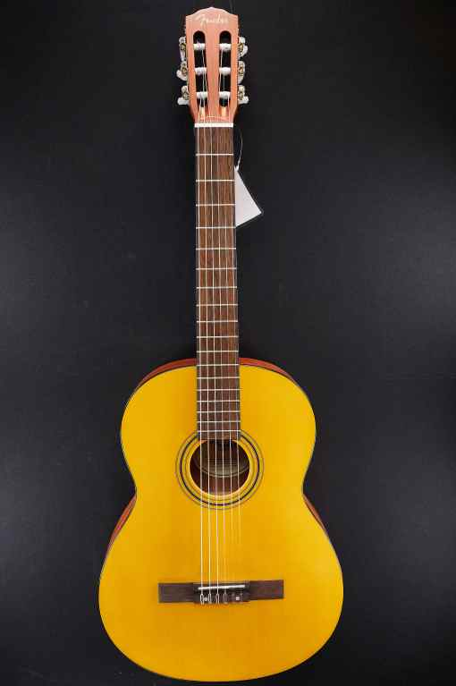 Fender ESC105