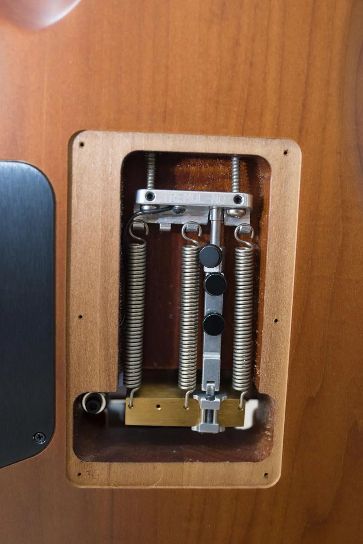 Th シャーベルギター「ガスリーゴーヴァンモデル」 DSC 3763