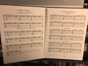 Mel Bay's Guitar Journal :Technique (sold out ?)