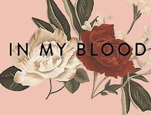 Shawn Mendes | In My Blood Chords Guitar Piano and Lyric