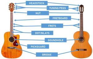 Parts of the Guitar: Diagrams for Acoustic and Electric