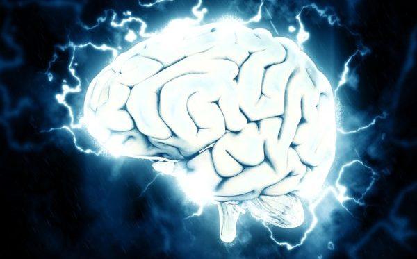 覚醒した脳