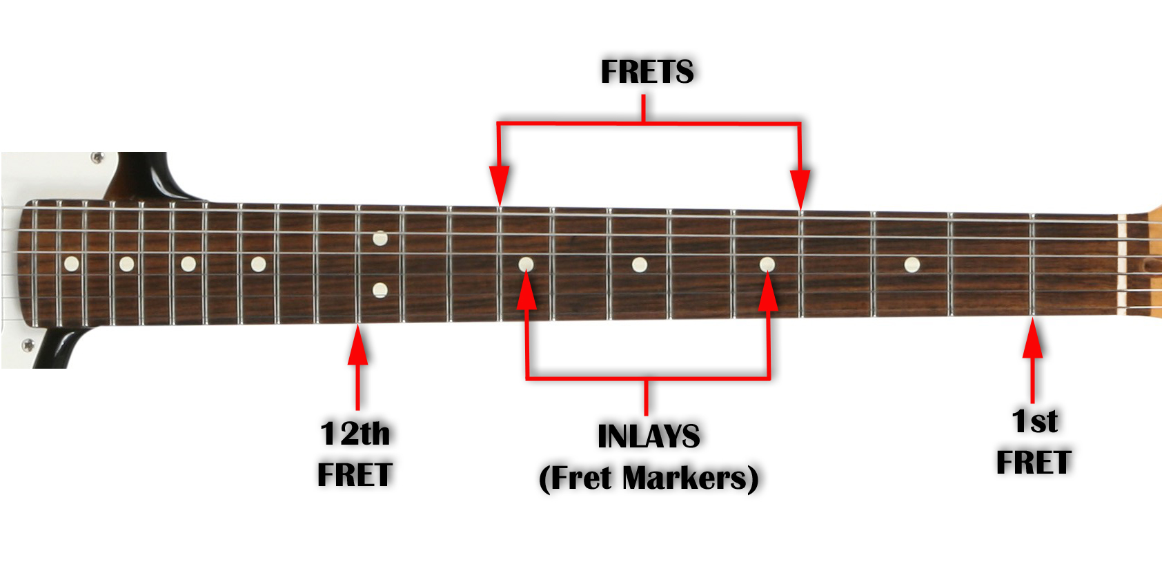Understanding Guitar Anatomy - Beginner Guitar Lesson