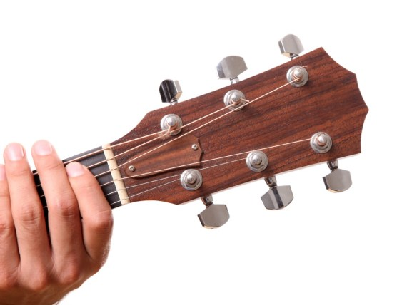 the tuning pegs
