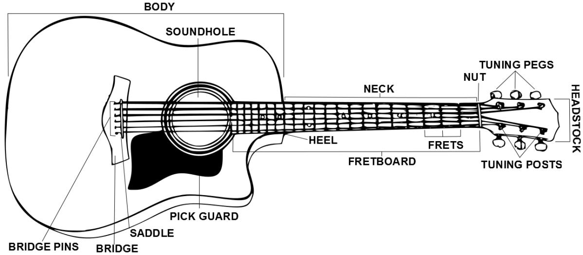 Guitar Anatomy | GuitarTuner