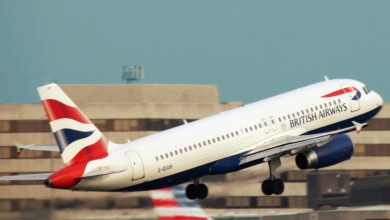 Ministry of Health recommends extending the decision to temporarily suspend international flights from the UK to India until January 7 2021
