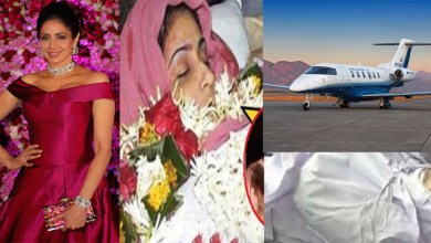 Photo of Take The Body of Sridevi has Sent a Plane to Dubai Anil Ambani