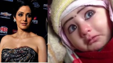 Photo of Sridevi Rebirth After a Single Day of Her Death, Know The Whole Truth
