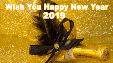 Photo of Happy New Year 2019, Images, Wishes, Quotes, SMS, Wallpapers, Essay On New Year