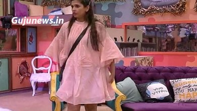 Photo of Bigg Boss 13 Dalljiet Kaur Opens Poll of Contestants  – Told These Three Fake