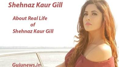 Photo of Shehnaz Kaur Gill, Age, Biography, Wiki, Boyfriend, Family, Songs, Movies