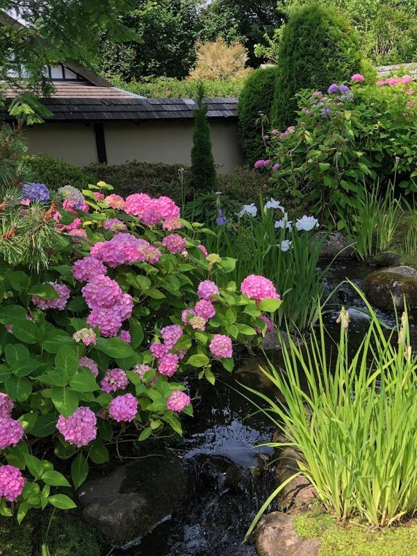Tema i de JKapanske haver