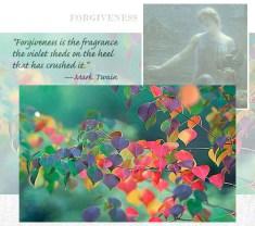 112308_forgiveness