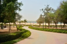 Dubai Says Will Have Disabled-Friendly Parks By 2016