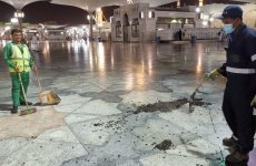 Video: Prophet's Mosque in Saudi's Madinah infested by swarms of crickets