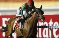 Animal Kingdom Wins $10 Million Dubai World Cup