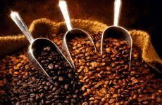 Dubai's DMCC to launch coffee centre