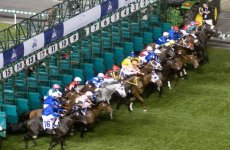 10 Facts About Dubai World Cup 2013
