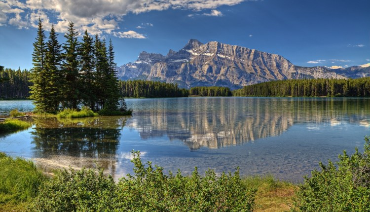 banff_park_alberta_canada_trees-wallpaper-1280×800