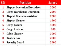 Senior Cargo Customer Services || United Kingdom || Doha Qatar
