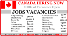 Bilingual Manager Canada Government Jobs open