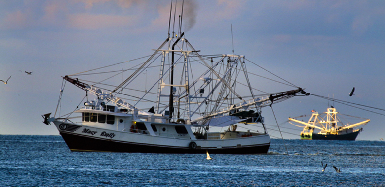 The Louisiana Restaurant Association has awarded the Gulf Seafood Institute a $50,000 grant to advocate for Gulf seafood. Photo: Ed Lallo/Gulf Seafood News