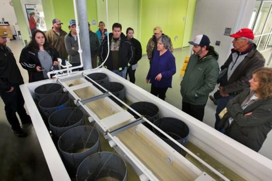 UNCW Oyster Lab_070l