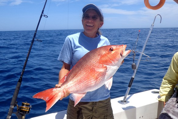 A lucky anglers hauls in a red snapper from the Gulf of Mexico.