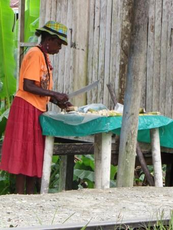 Bykvinna kapar sockerrör.