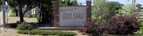 Take Our Community Needs Assessment Survey!!! Government GULL LAKE  Town Council Surveys Community