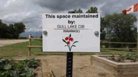Thanks to the Volunteers Who Help Care For Our Public Spaces GULL LAKE Town Beautification  Community Communities in Bloom