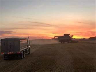Wishing our Farmers a Safe and Prosperous Harvest Agriculture Business GULL LAKE  Crops Community