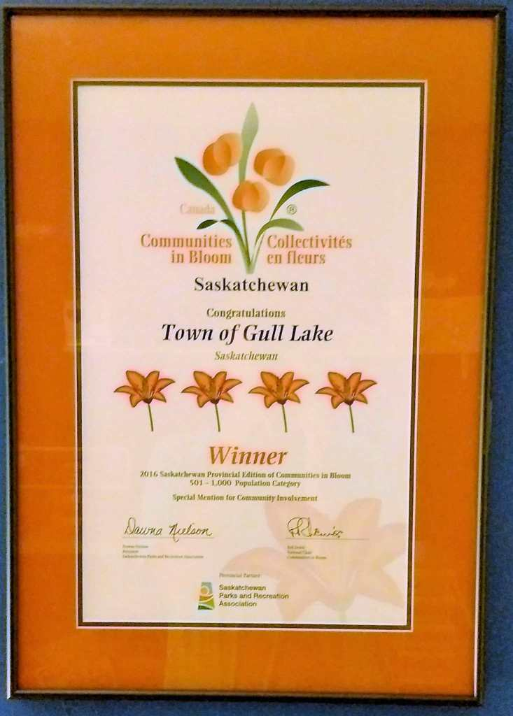 Town of Gull Lake 2016 Year in Review Business Government GULL LAKE Town Beautification