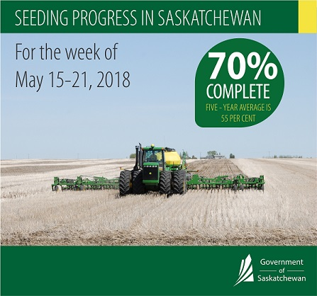 Crop Report For The Period May 15 To 21, 2018 Agriculture SouthWest Saskatchewan  Crops